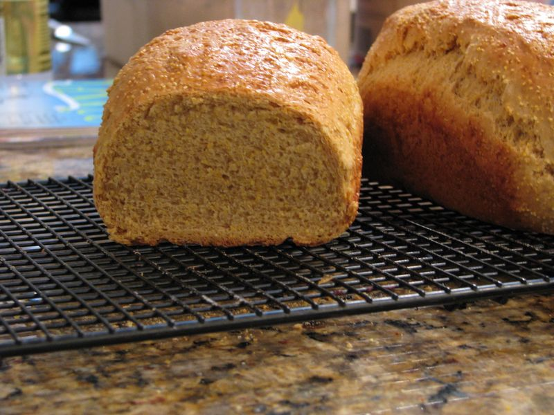 Anadama bread slices at www.friendsfoodfamily.com