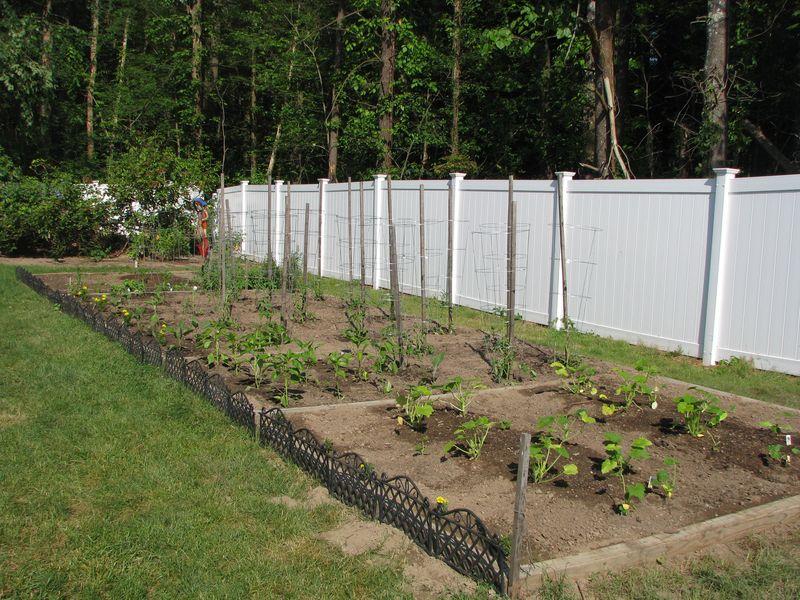 Garden5 @picturetrish.com