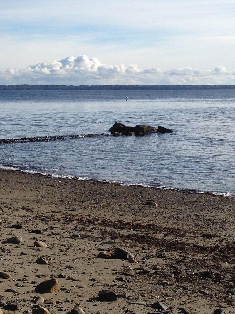 Shoreline in Lincolnville, ME @ picturetrish.com