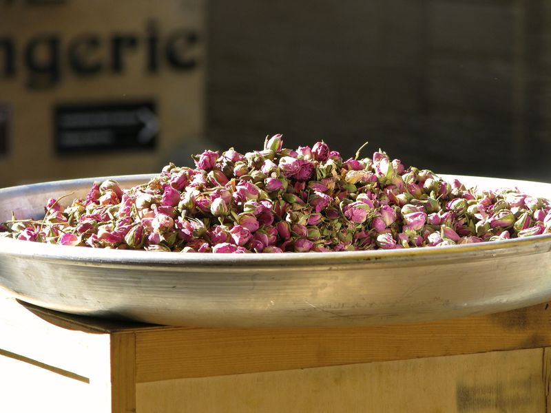 Pan of Rose Buds in Gordes, France @ picturetrish.com